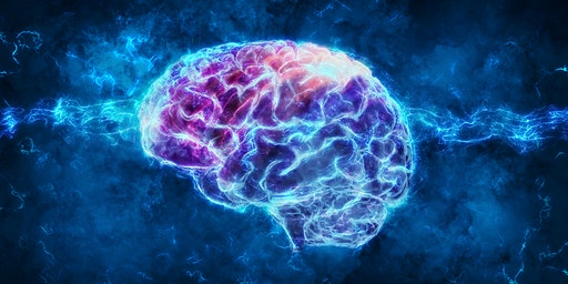 Our Mysterious Frontal Lobes