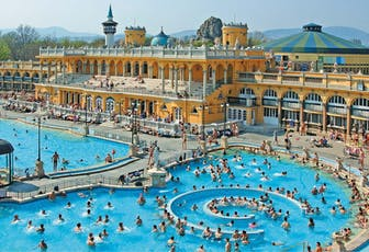 Széchényi Spa entry + Dinner & Cruise with live music in Budapest tickets