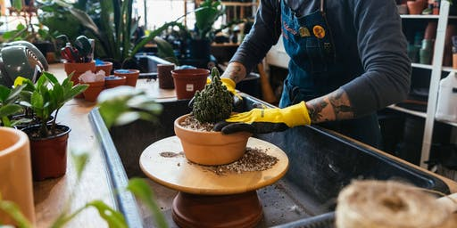 Cactus 101 Workshop | The Victorian Atlanta @ Citizen Supply