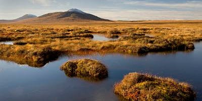 Peat, soil and sea – managing carbon in Scotland