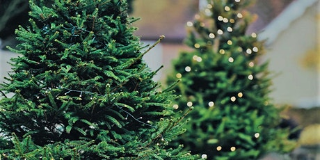 Manorlands Christmas Tree Collection Service tickets