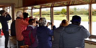 Birdwatching for Beginners Course at Dart's Farm 2020