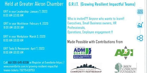 Growing Resilient Impactful Teams