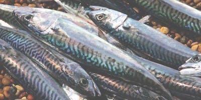 Fish cookery with Alex Von Riebech - 28 March 2020