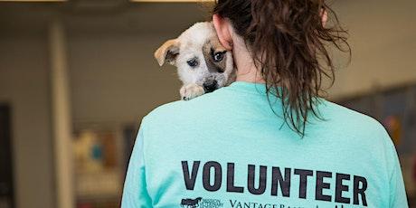 Volunteer Info Session at Trenton Center tickets