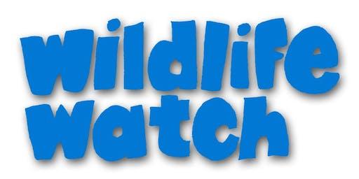 Wildlife Watch - Bug Hunting (2yrs+)