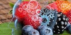 Alimentazione e Gestione dello Stress. Prevenire per non medicalizzare