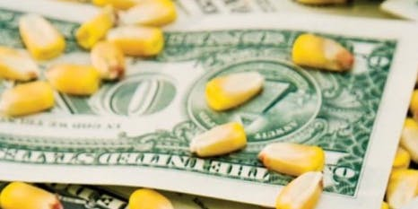 New Hampton -  How to get $4 Corn:  Learn Crop Marketing From Start to Finish