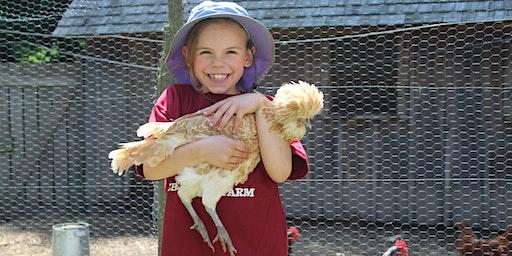 Chellberg Farm Camp - July Age 7-8