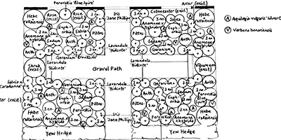 Planting Design 2: Create a Professional Planting Design