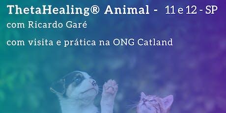 Formação Oficial ThetaHealing Animal - SP - 11 e 12 de janeiro ingressos
