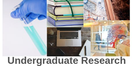 CCRF: Undergraduate Research Information Session tickets