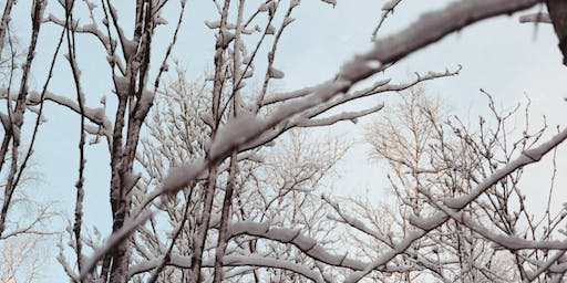 Anxiety, Stress and The Winter Blues: A therapists take on what we can do