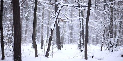 Airdrie Soundbath and Ceremony : Winter Solstice