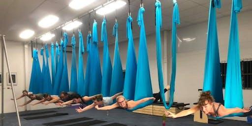 SKY Yoga Teacher course 2020