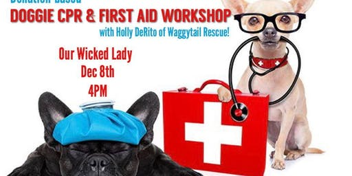 Pet CPR & First Aid Workshop!