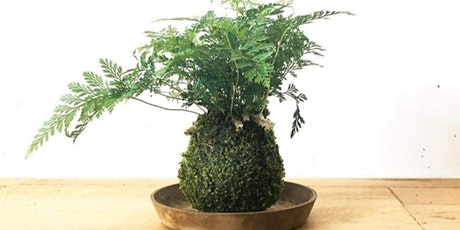 Kokedama (Japanese Moss Ball) Workshop tickets
