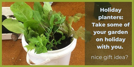 Edible Gardening: Holiday planter with in ground worm farm.