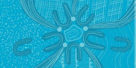 Indigenising the Curriculum Framework Consultation tickets
