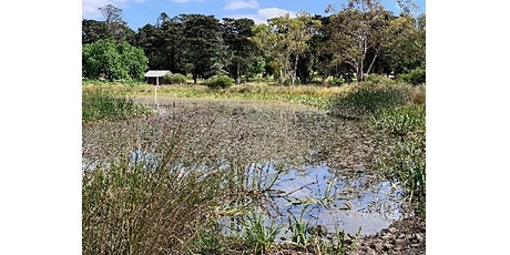 A clever & creative solution for stormwater at the Geelong Botanic Gardens tickets