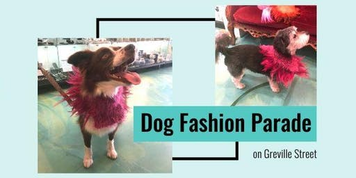 Dog Fashion Parade on Greville St Prahran
