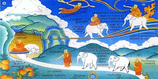 LAUSANNE | Initiation Calme Mental | Formation Méditation