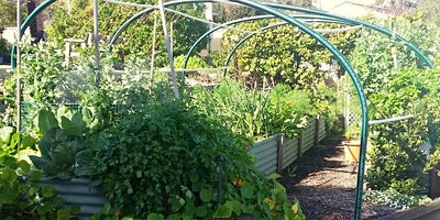 Beginners Guide to Permaculture Design – Adult Event