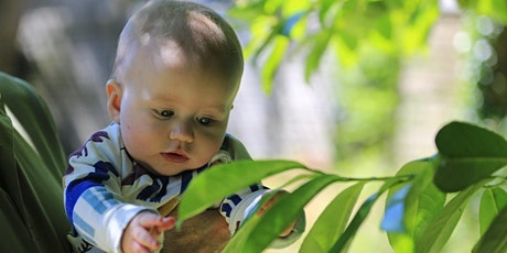 Where are the babies? Exploring outdoor provision for children from birth to two tickets