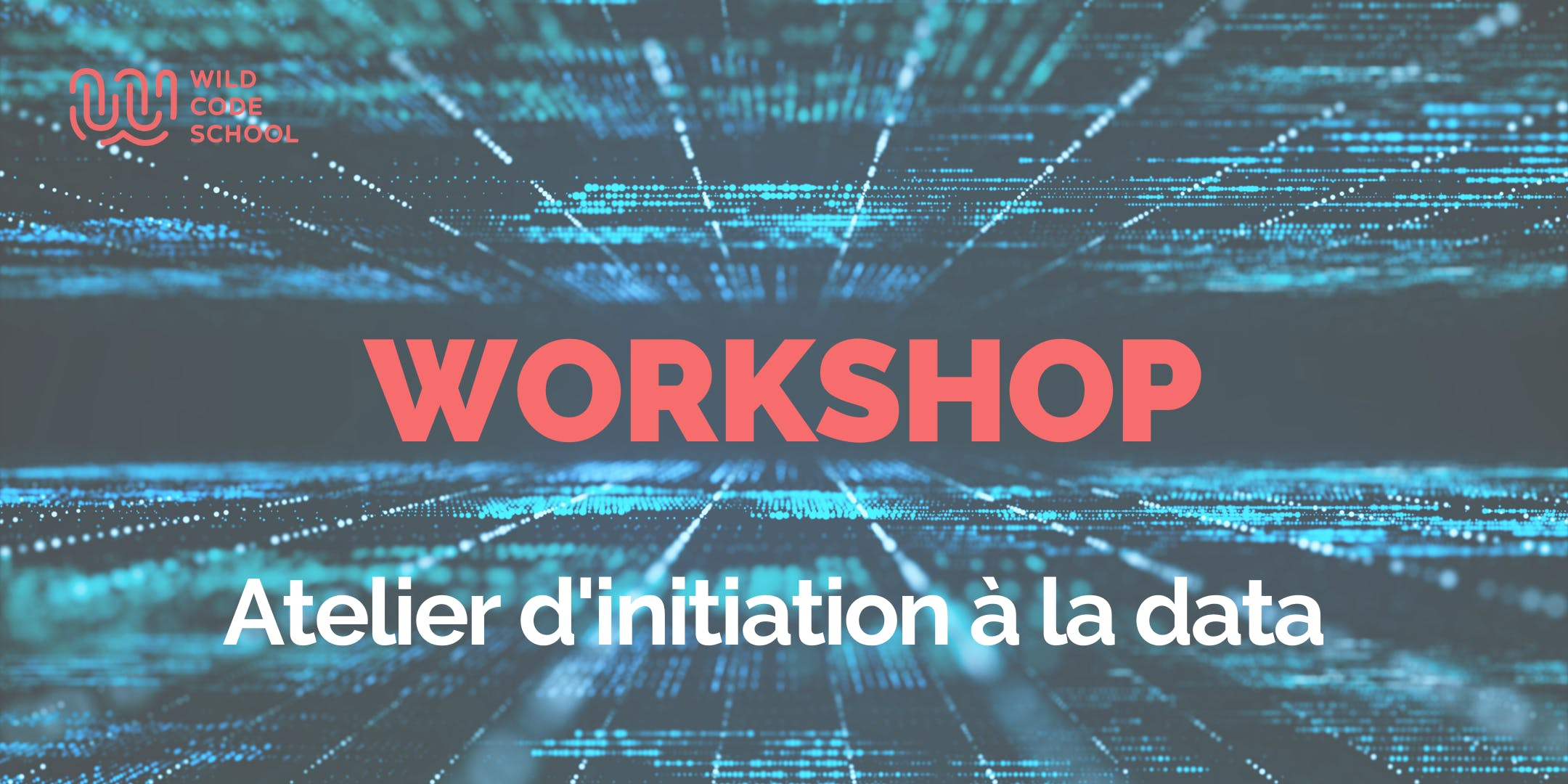 Workshop :  Atelier d'initiation à la Data - Wild Code School  Bruxelles