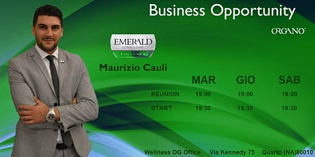 Business Opportunity Meeting biglietti