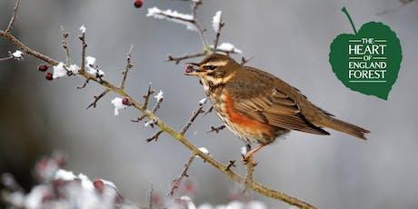 Guided Walk: Winter Morning Bird Walk tickets
