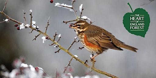 Guided Walk: Winter Morning Bird Walk