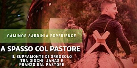 Family hiking nel Supramonte di Orgosolo con pranzo dal pastore. biglietti