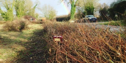 An Introduction to Hedge Laying