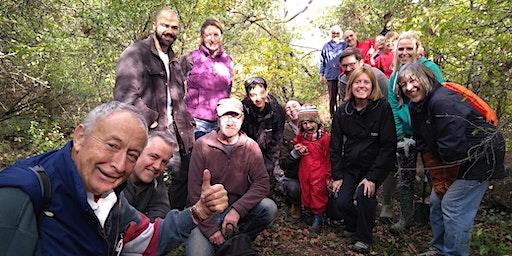 Berrylands Nature Reserve - Christmas Community Conservation Day