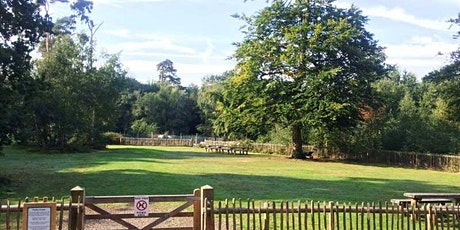 Foxley Copse in Black Park tickets