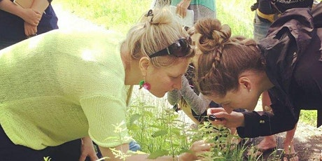 March Plant Journey with Medical Herbalist Kathie Bishop tickets
