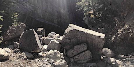 Beginner Guided Hike Jura Creek- Dog Friendly! tickets