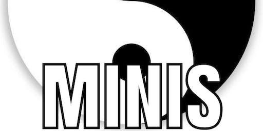 Yin Yang Minis 3-6YO (THREE CLASSES)
