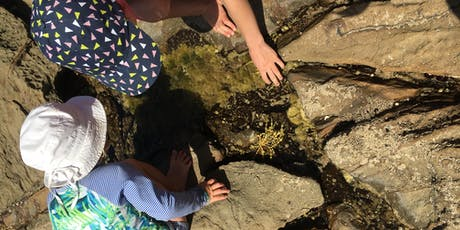 Rockpool Ramble 13th January 2020 - Kennett River tickets