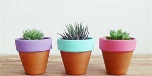 Free School Holiday Event: Make your own Mini-Garden