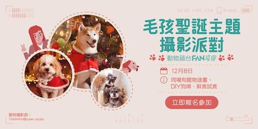 動物蘋台FAN享會:毛孩聖誕主題攝影派對