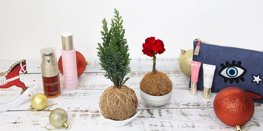 Make your Kokedama Christmas Tree or Poinsettia with Clarins!