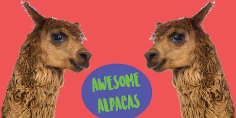 Awesome Alpacas - Kids Art Class tickets