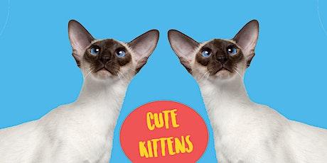 Cute Kittens - Family Art Class tickets