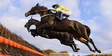 Sporting Links Business Club - December Meet - Festive Jumps Racing/ Networking at Lingfield Park tickets