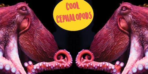 Cool Cephalopods - Kids Art Class