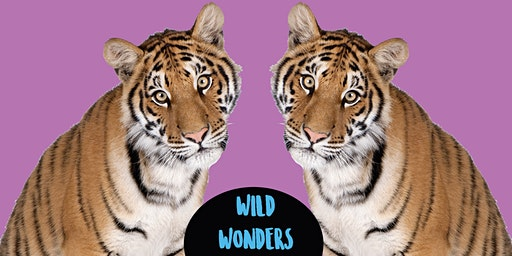 Wild Wonders - Family Art Class