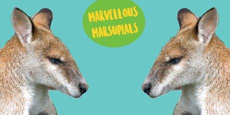 Marvellous Marsupials - Art Class For Older Kids tickets