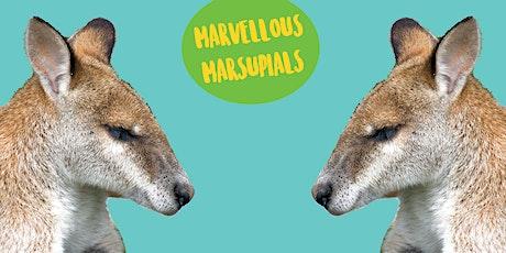 Marvellous Marsupials - Kids Art Class tickets